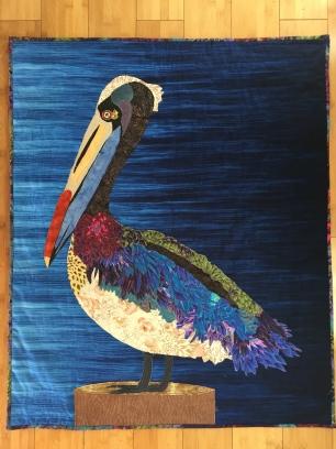 Petals, the pelican